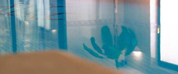 Sensi Baby Swim Sessions