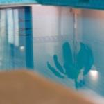 senSI Swim Reflections